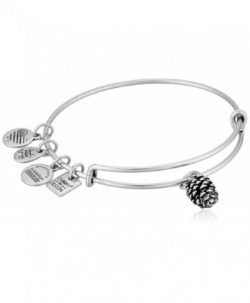 Alex and Ani Charity by Design- Pinecone EWB Bangle Bracelet - Rafaelian Silver - C7185O9T6K7