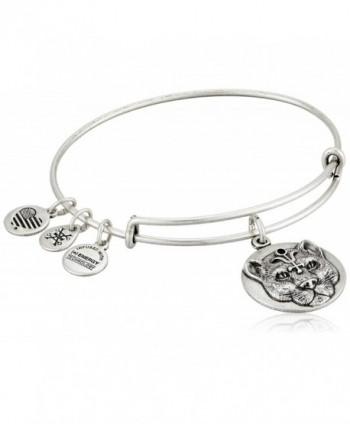 Alex and Ani Wild Heart Expandable Rafaelian Bangle Bracelet - Rafaelian Silver - CC125HEQO41