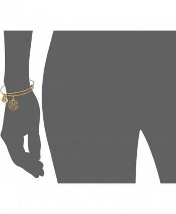 Alex Ani Rafaelian Bangle Bracelet