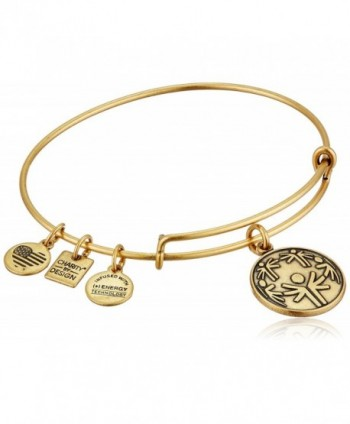 Alex and Ani Charity By Design Power of Unity Bangle Bracelet - Rafaelian Gold - C611NVC0WAX
