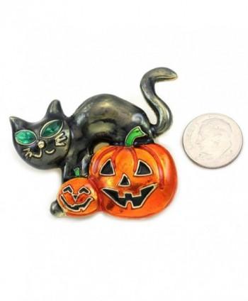 Halloween Kitten Lantern Pumpkin Costume in Women's Brooches & Pins