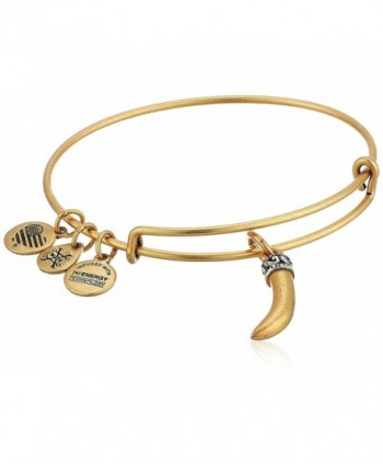 Alex and Ani Womens Horn Bangle - Rafealian Gold - C9182AWMMY7