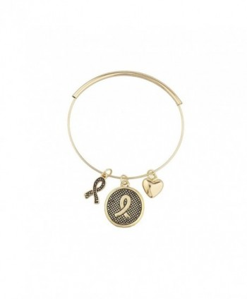 Lux Accessories Goldtone Awareness Bracelet